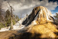 Yellowstone National Park print